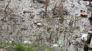 Річку Рось очистили від сміття!