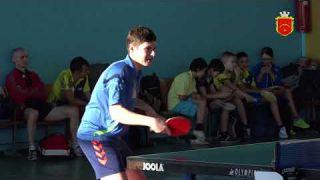 Всеукраїнський відкритий турнір із настільного тенісу серед ветеранів